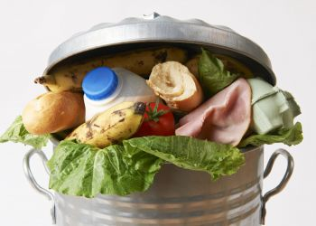 Minimising food and garden waste